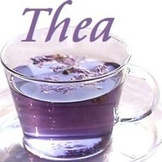 square tea