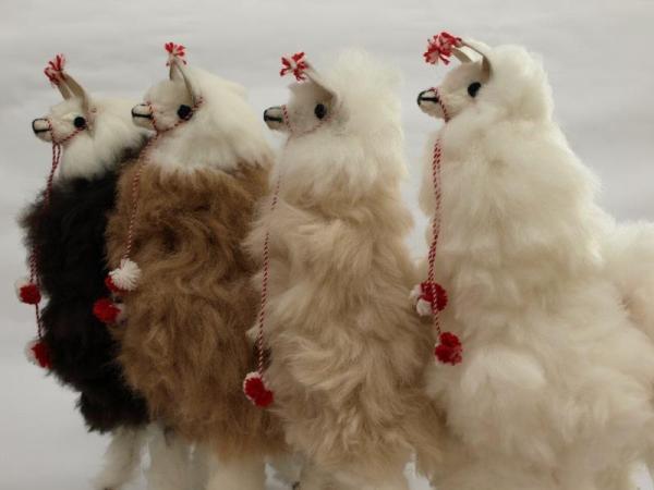 Four-Alpacas